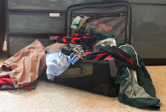 packing-for-vida-vegan-con