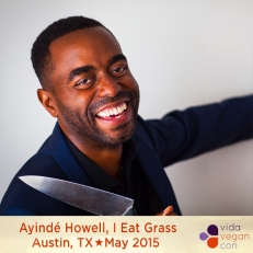 Ayinde HowellVVC speakers