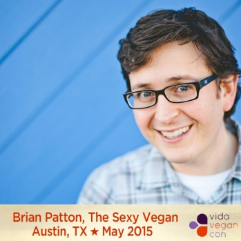 Brian Patton VVC speakers